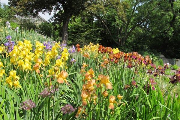 Botanischer Garten Jena 60plusminus